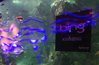 Bing hanging out with the fish.